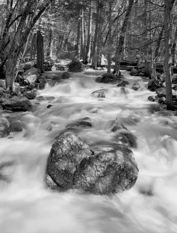 ROCK AND RAPIDS, BRIDALVEIL CREEK, YOSEMITE