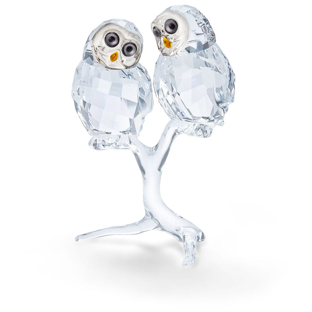 Swarovski Crystal Owl Couple Figurine 5493722
