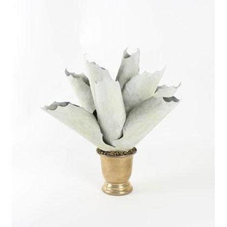 Tommy Mitchell Agave Medium 001MAGV