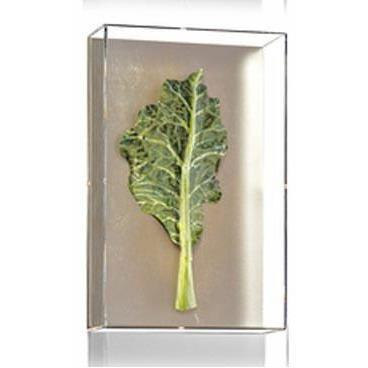 Tommy Mitchell Small Vegetable Study Series 4 0004SVS