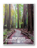 Muir Woods National Monument Poster - Albion Mercantile Co.