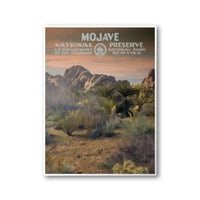Mojave National Preserve Poster - Albion Mercantile Co.