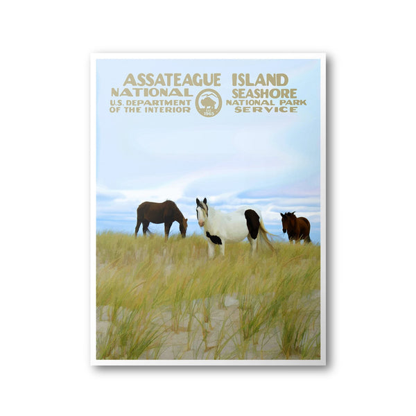 Assateague Island National Seashore Poster - Albion Mercantile Co.