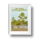 Big Cypress National Preserve Poster - Albion Mercantile Co.