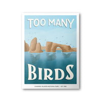 Channel Islands National Park Poster | Subpar Parks Poster - Albion Mercantile Co.