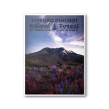 Gifford Pinchot National Forest Poster