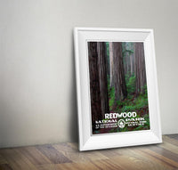 Redwood National Park Poster - Albion Mercantile Co.