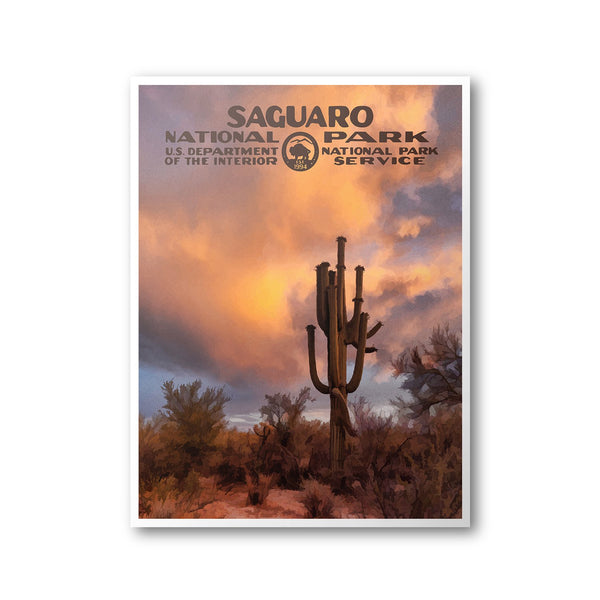 Saguaro National Park Poster - Albion Mercantile Co.