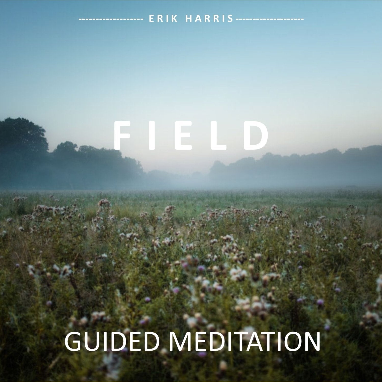 FIELD- GUIDED MEDITATION - Chi for Healing