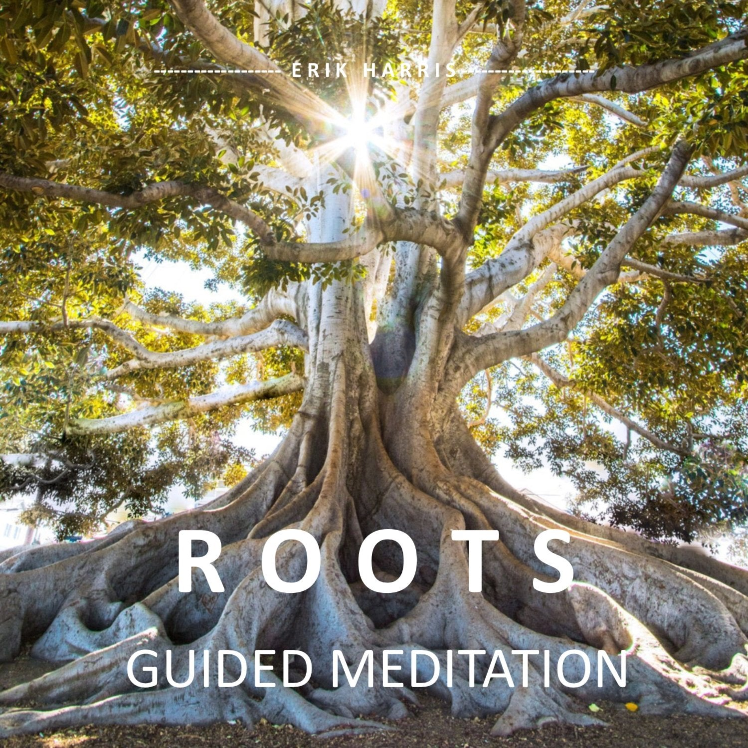 ROOTS - GUIDED MEDITATION - Chi for Healing