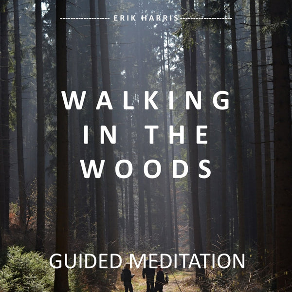 WALKING IN THE WOODS - GUIDED MEDITATION - Chi for Healing