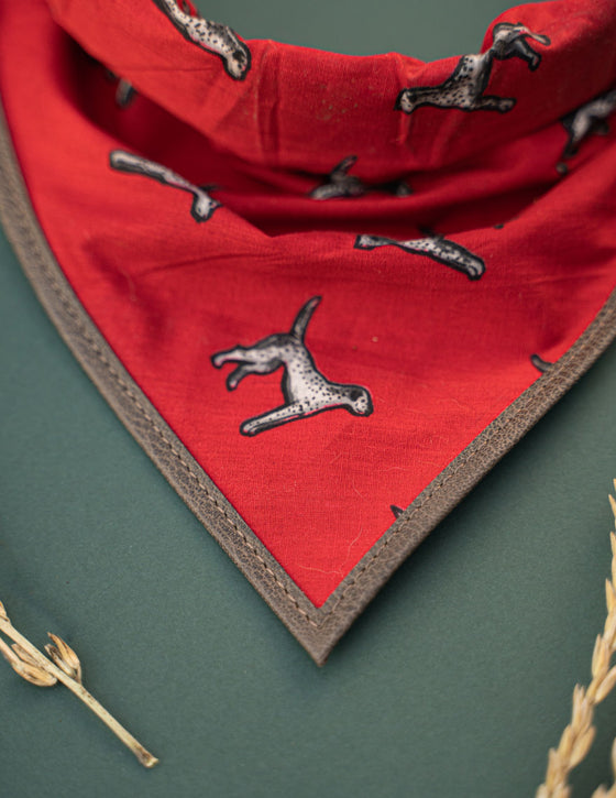 The Faithful Hound Bandana & Collar Set