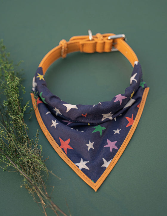 The Starry Night Bandana & Collar Set