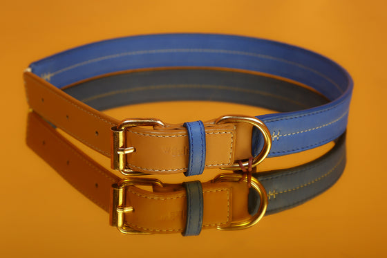 Fudge & Nautica Blue Two-Tone Collar