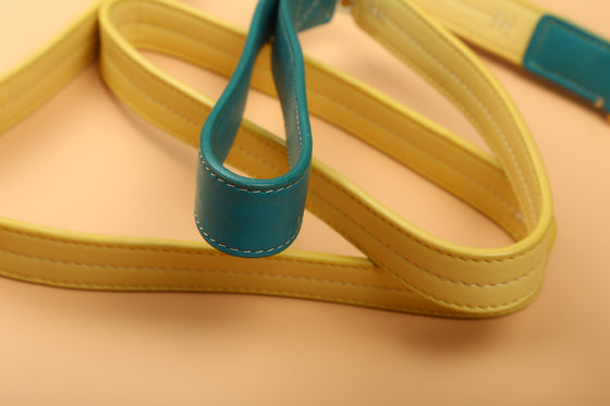 Teal & Canary Yellow Two-Tone Leash