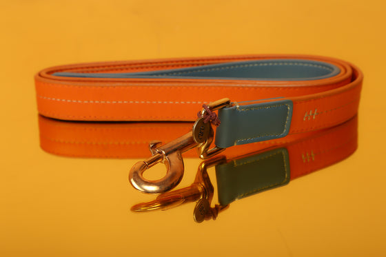 Harbor & Sunkissed Orange Two-Tone  Leash