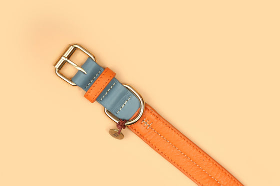 Harbor & Sunkissed Orange Two-Tone Collar