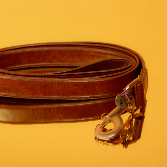 Chocolate Brown Leash