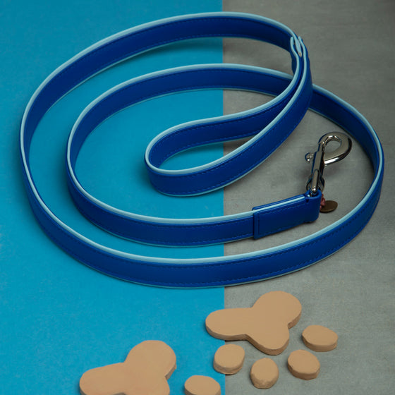 Tickle Me Blue Leash