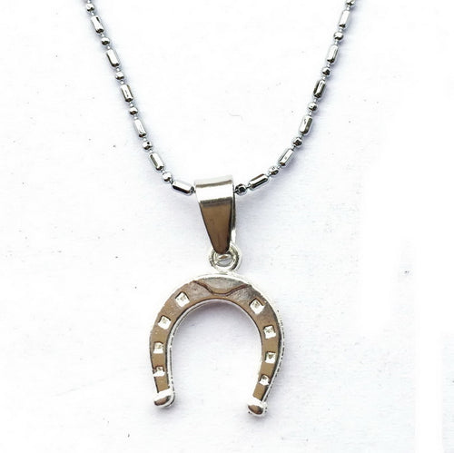 Horseshoe Dainty Necklace - SafeStallion