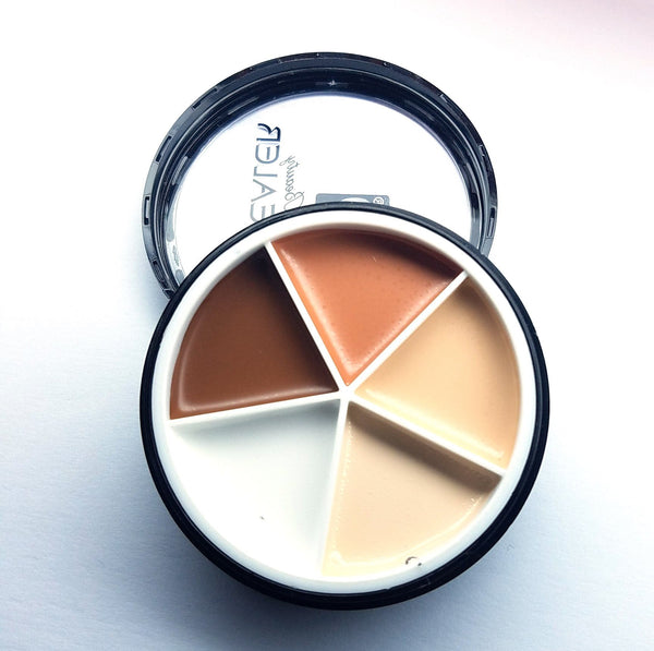 Pro Perfection Concealer