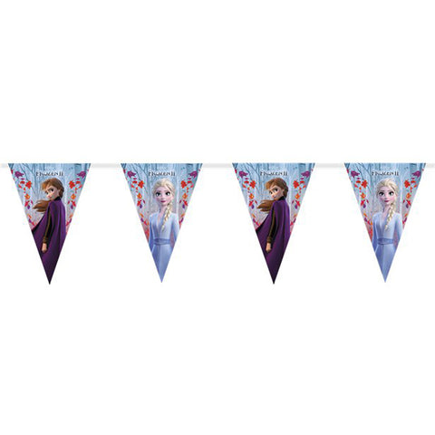 Disney Frozen 2 Triangle flag banner 9 flags