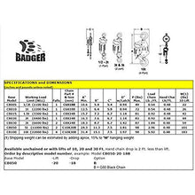 Load image into Gallery viewer, All Material Handling CB020-20-18 Badger Manual Chain Hoist, 2 Ton, 20' Lift, 18' Drop