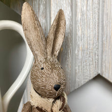 Load image into Gallery viewer, BERTIE BUNNY