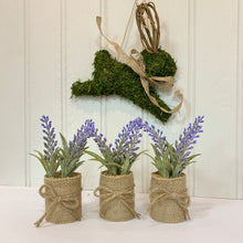 Load image into Gallery viewer, MINI HESSIAN LAVENDER