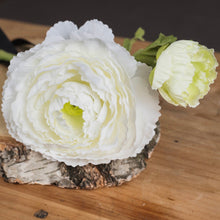 Load image into Gallery viewer, WHITE RANUNCULUS SPRAY