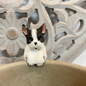 FRENCH BULLDOG POTHANGER