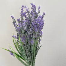 Load image into Gallery viewer, LAVENDER STEM