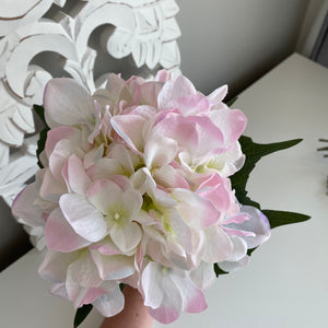 LIGHT PINK HYDRANGEA BUNCH