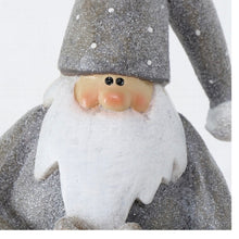 Load image into Gallery viewer, GREY & WHITE SANTA