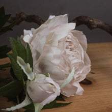 Load image into Gallery viewer, GREY ROSE & PEONY