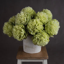 Load image into Gallery viewer, FLUFFY GREEN PEONY