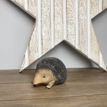 Load image into Gallery viewer, HEDGEHOG