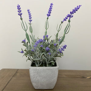FAUX POTTED LAVENDER