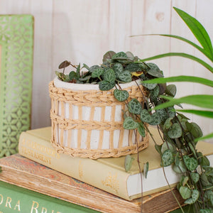 SPECKLED & WOVEN PLANTER