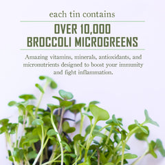 Broccoli Booster - Beyond Microgreens