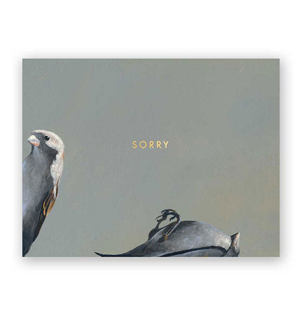The Mincing Mockingbird - Birds Sorry Card (4460732579910)