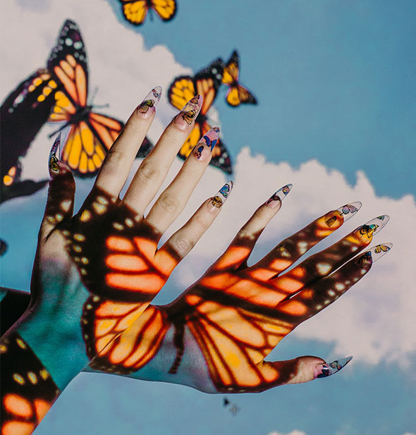 Hands wearing long fingernails are held in front of a blue sky and clouds background with monarch butterfly light cast on them