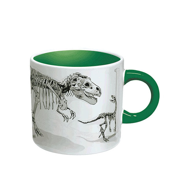 Dinosaur fossils mug with green handle and interior