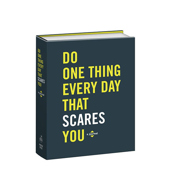 Dark blue cover of the Do One Thing Every Day That Scares You journal with yellow and white lettering