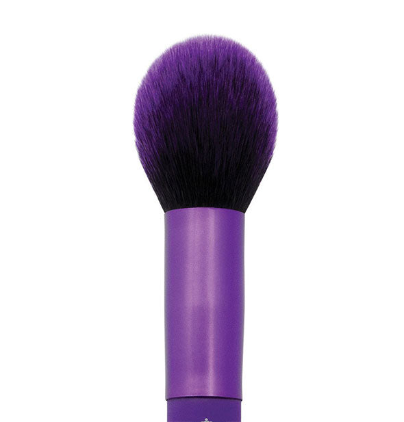 A close-up view of The Moda Blush Purple Brush by Royal Brush