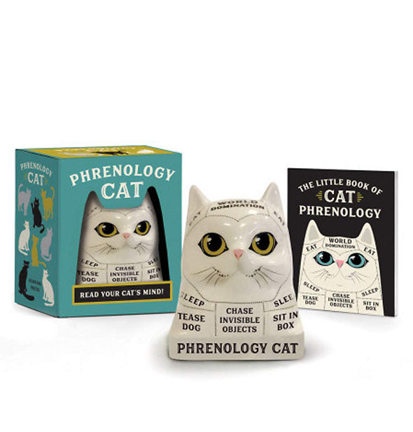 Phrenology Cat bust with booklet and box