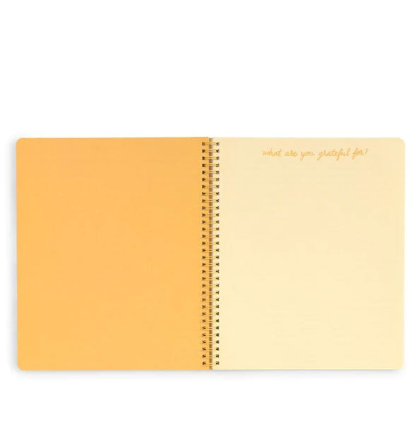 ban.do - Rough Draft Large Notebook: Sunshine Superbloom