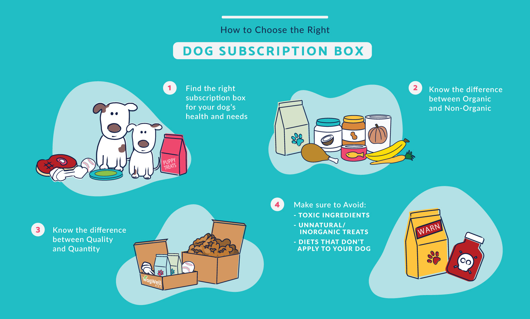 Wagwell monthly dog box subsription info graphic