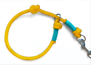 NEW - Customisable Yellow Slip Lead Collar Attachment