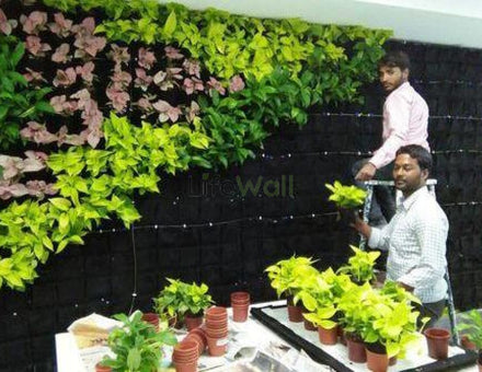 Installation Service For Natural Vertical Garden